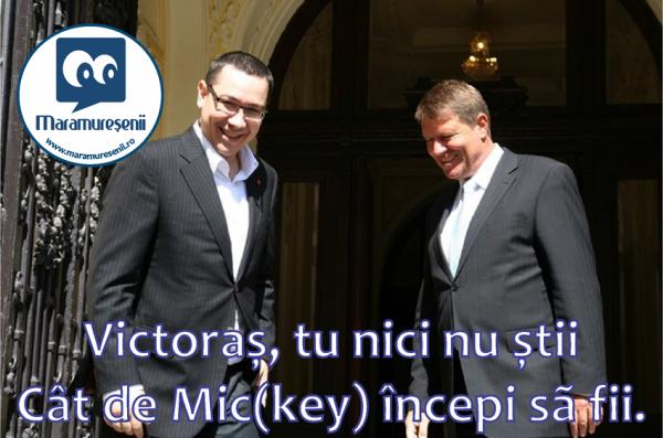 303 mickey