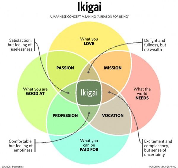 ikigai Toronto Star Graphic